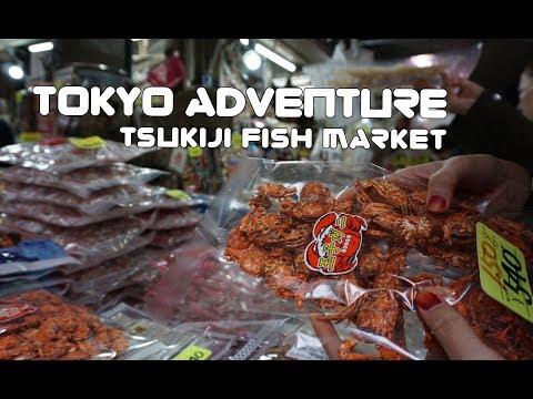 Tokyo Adventure - Tsukiji Fish Market [Volume 6]