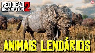 RED DEAD REDEMPTION 2 - CAÇANDO ANIMAIS LENDÁRIOS || SEM SPOILERS!