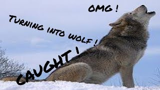 Must See ! Caught ! Grandpa turning into wolf !