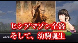 【#13】ウイニングポスト9「ヒシアマゾンが年度代表馬へ」
