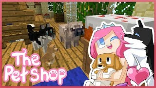THE PET SHOP! Ep.5 The Very Hungry Pug! Feat DAN TDM!
