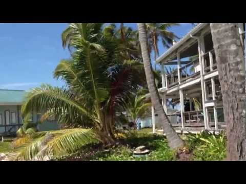 Smithsonian Institution, Caribbean Coral Reef Ecosystem Program VID#3