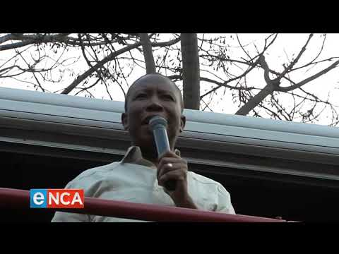 EFF fires lawyers