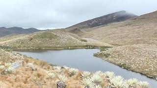 Laguna Larga Páramo de Sumapaz, Bogotá, Colombia
