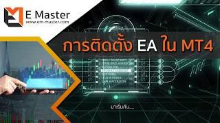 วิธีติดตั้ง EA Forex ใน MT4
