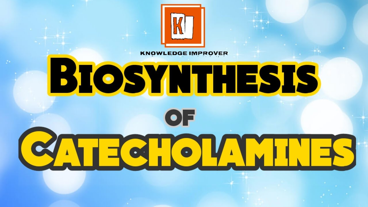 Biosynthesis of Catecholamines | Synthesis of Catecholamines | Medicinal Chemistry