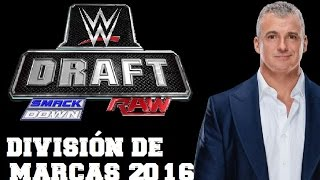 NOTICIA WWE - SEPARACIÓN DE MARCAS Y DRAFT 2016