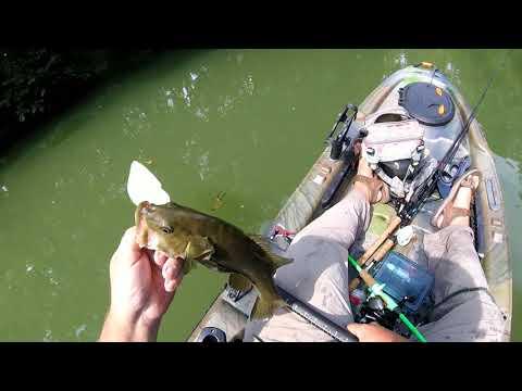 North Fork Of Elkhorn Creek...  More Bass!