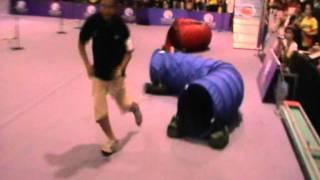 Dk9 - Pet World Malaysia Petnyou Ob&agility  Trial 2011 - Eyson Teh &  Wei Wei.mpg