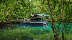 Jungle Cruise at Homosassa Springs Wildlife State Park - Old Florida Attraction & Wild Animal Zoo