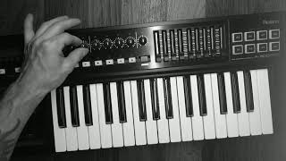 Roland A-300 Midi Keybord Controller / unboxing