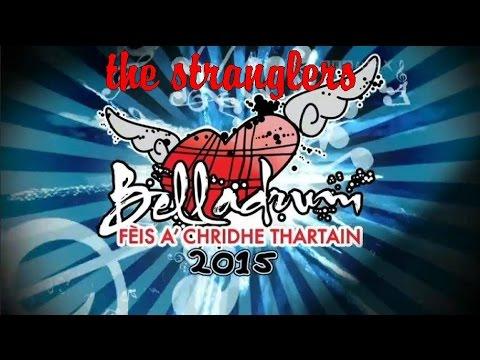 The Stranglers @ Belladrum Festival 2015
