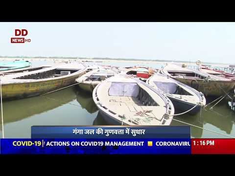 Varanasi: Ganga water turns cleaner during lockdown