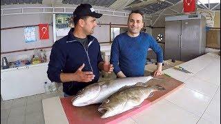 Mehmet Cheff ile Kuzu & Lahoz Temizleme / How To Clean Amberjack & Grouper