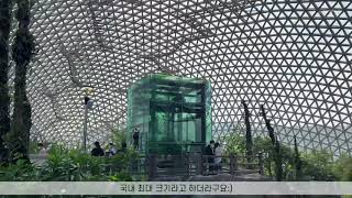 거제 유리온실 정글돔 _#휴무 #브이로그#정글돔
