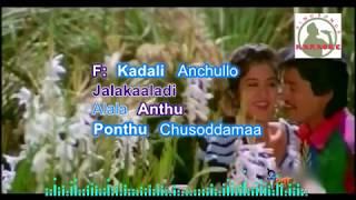 CHITTI GUMMA PADAVE telugu karaoke for Male singers with lyrics