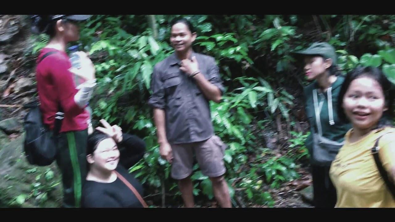 Tangkahan | The Hidden Paradise | Sumatra Utara