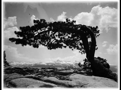 Lost Ansel Adams Photos Worth $200 Million