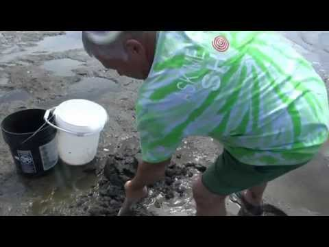 Complete Instructions For Clamming In Florence Oregon With Mike Bones..