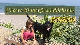 Die 20 kinderfreundlichsten Hunderassen für Familien mit Kindern
