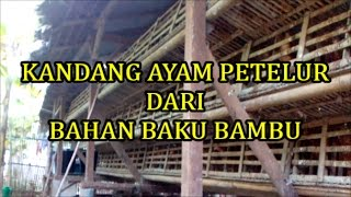 Video Kandang Ayam Petelur Dari Bambu download MP3, 3GP, MP4, WEBM, AVI, FLV Oktober 2018