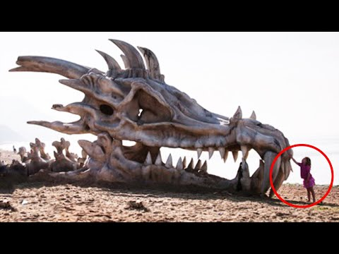 10 Mythical Creatures That Actually Existed!