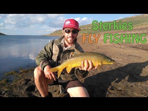 Sterkfontein Fly Fishing | Fly Fishing Sterkfontein Dam For Yellowfish | Fish The Fly