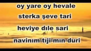 dino oy yare KARAOKE kürtçe karaoke