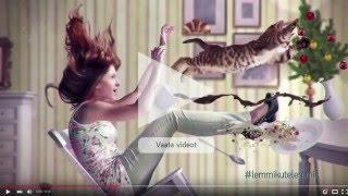 Petcity Lemmikloomakeskuse Avamiskampaania - Protsess Ja Tulemused