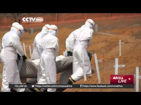 Impact of Ebola outbreak in Guinea