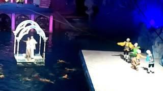 7 января на водном шоу в Олимпийском бассейне