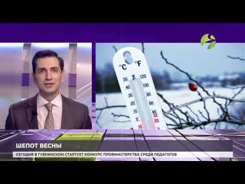 Гидрометцентра России сделал прогноз погоды на апрель