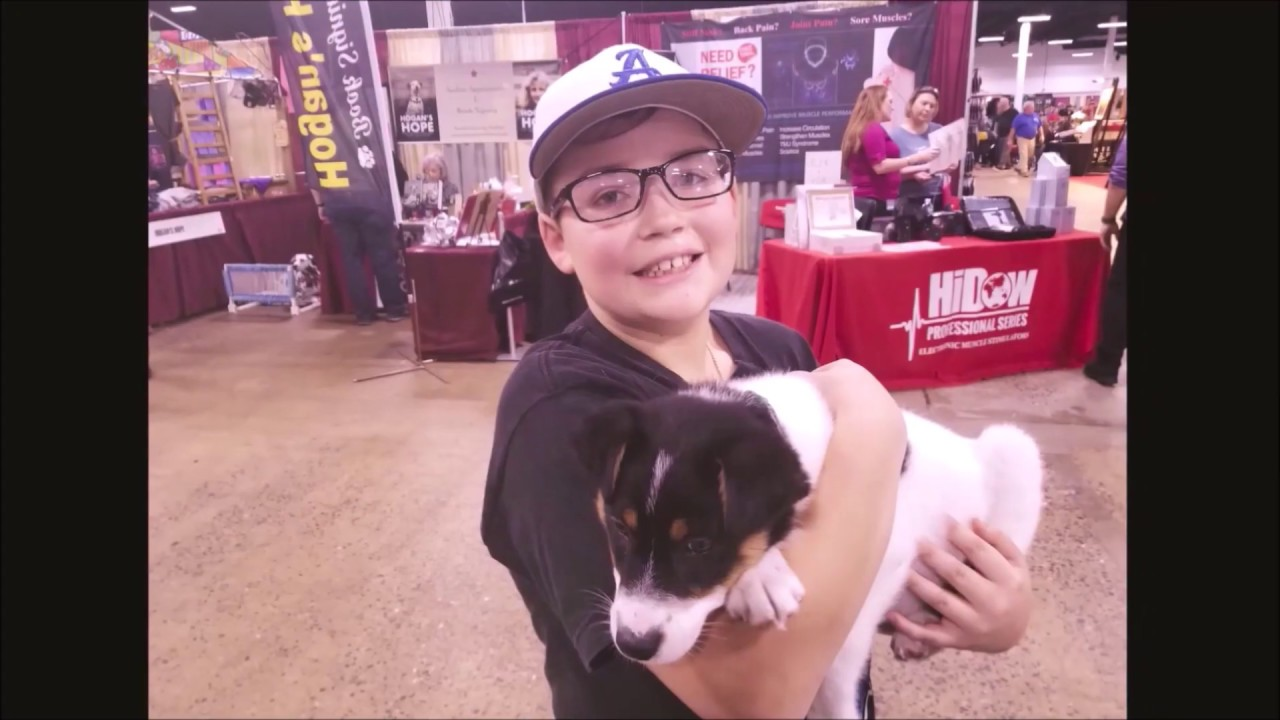 Dogdad Approved Road Show: Greater Philadelphia Pet Expo