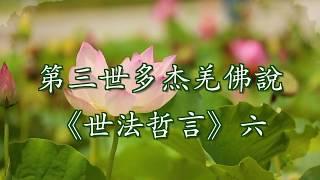 第三世多杰羌佛說《世法哲言》(六)