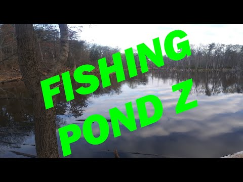 Crypto-Fishing Pond Z Featuring The Baltimore Angler