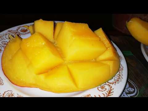 Продолжение. Как вырастить манго и дождаться плодов.