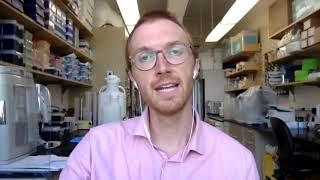 LYSA: atezolizumab, obinutuzumab and venetoclax in R/R DLBCL