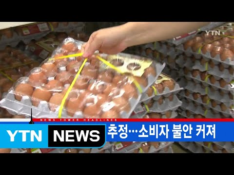 [YTN 실시간뉴스] 수십만 개 유통 추정...소비자 불안 커져 / YTN