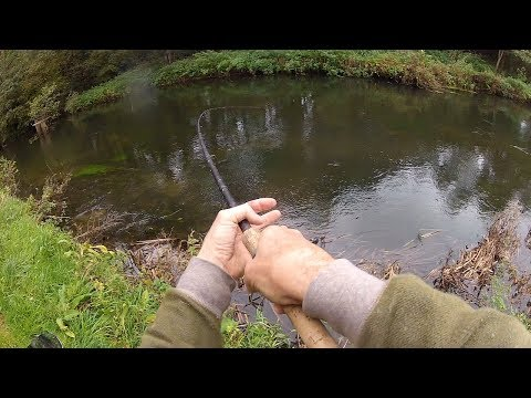 Float Fishing With Bread & Sweetcorn