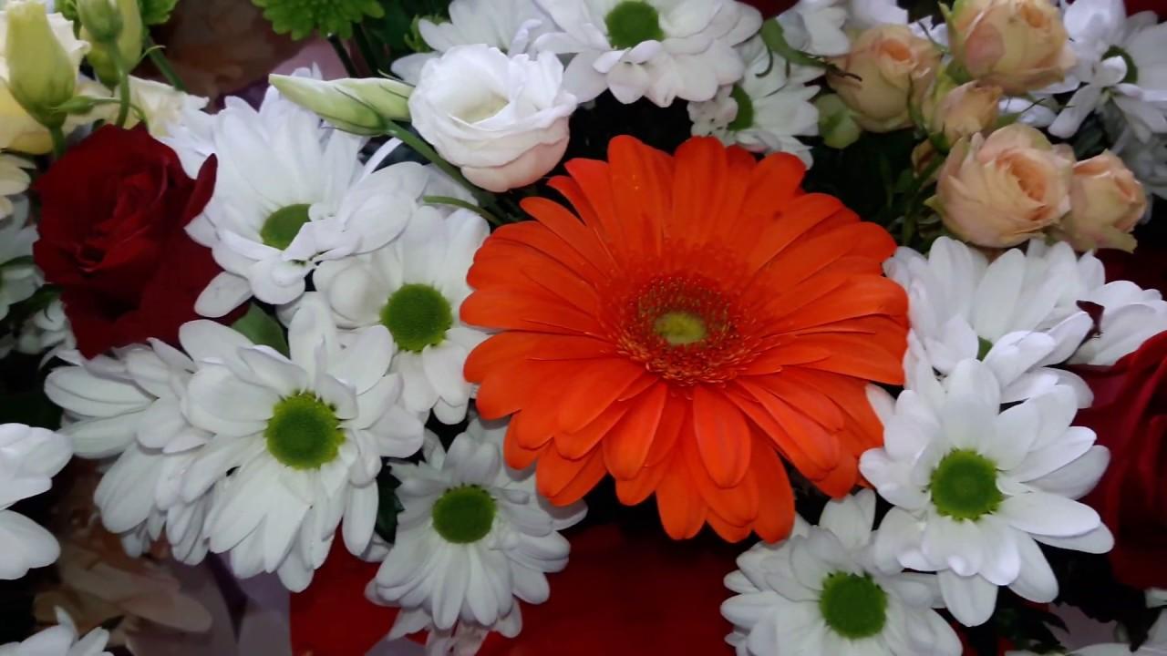 Влог. Весеннее вдохновение цветами для всех, ???????? хорошего Вам дня!