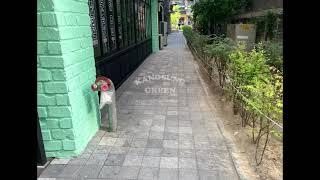 [강성그린] 서울 마곡동 온달집 테라스 인조잔디 시공