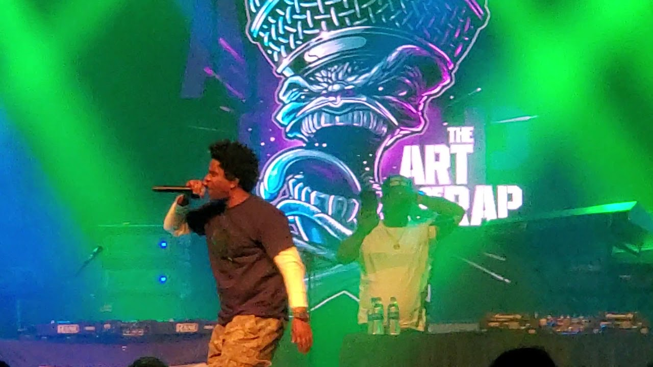 """Download Das EFX """"they want EFX"""" live at the Art of Rap concert 2019"""