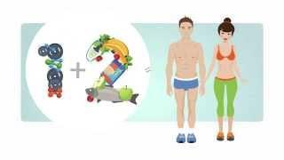 Основы ЗОЖ. Как привести тело в порядок