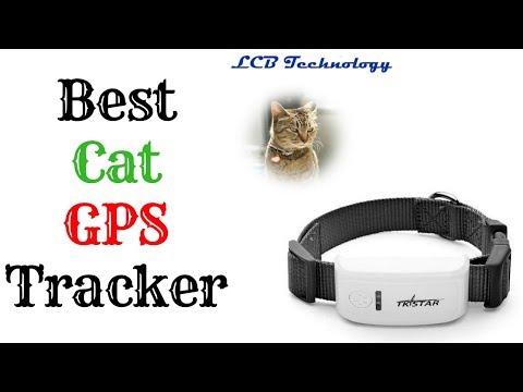 Best Cat GPS Tracker 2019