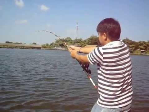 เย่อกับปลา : โปรปุ้ย