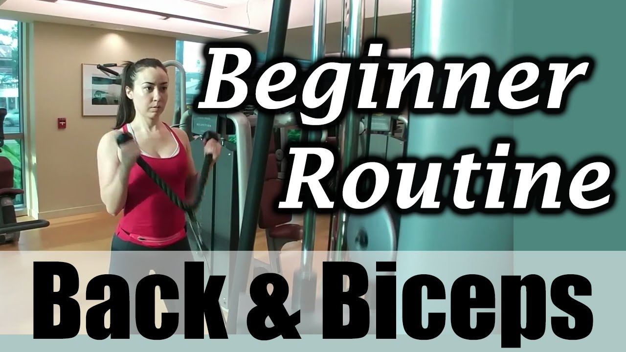 Beginner Back and Biceps Gym Workout Routine