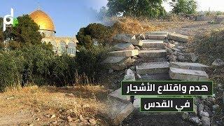 شاهد كيف يستهدف الاحتلال منطقة باب الرحمة ويخربها في القدس