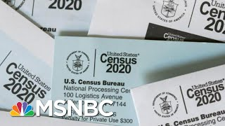 US Census Bureau To Suspend Counting Operation On Sep. 30 | MTP Daily | MSNBC