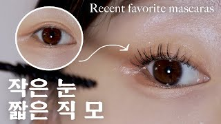 ENG) 짧은 직 모 속눈썹도 아이돌 인형 속눈썹 OK! 요즘 내 최애 마스카라 추천✨ 비건 마스카라, 작은 눈에 잘 맞는 브러쉬 Favorite korean mascaras