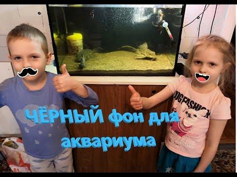 Дети делают фон для аквариума, супер фон за 0 рублей